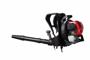 Troy-Bilt TB4BP EC 32cc 4-Cycle Backpack Blower review