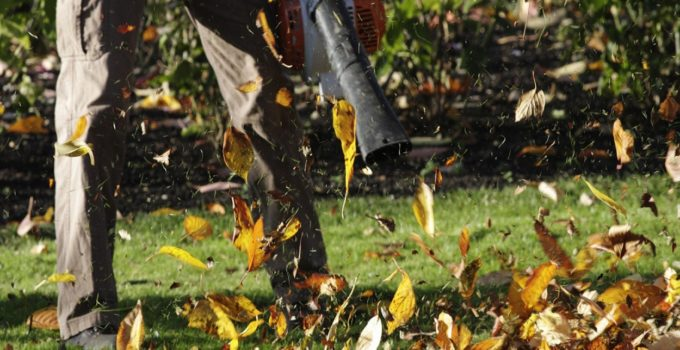 Worx Leaf Blowers