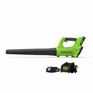 Greenworks Cordless Jet Blower, 2.0 AH Battery Included